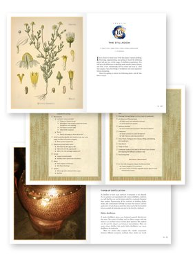 how-to page design example