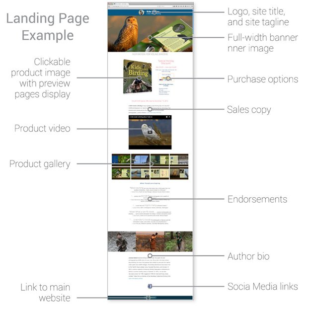 website landing page design example