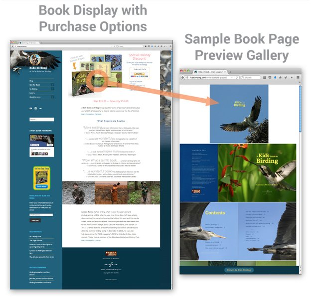 website book preview examples