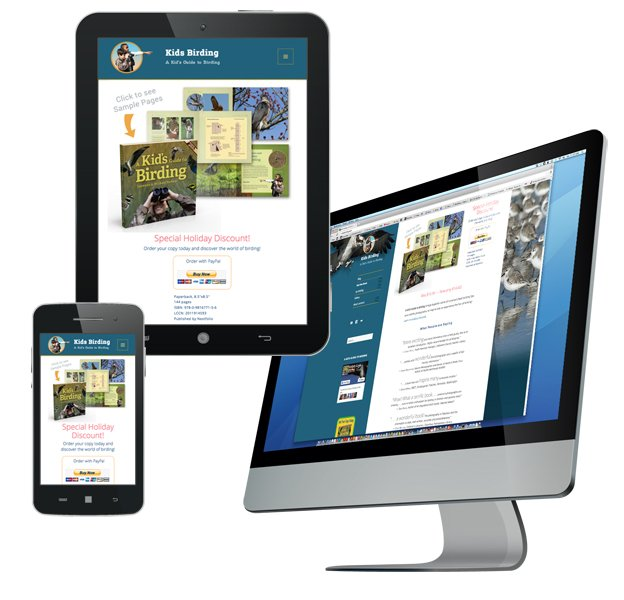 responsive webste design example