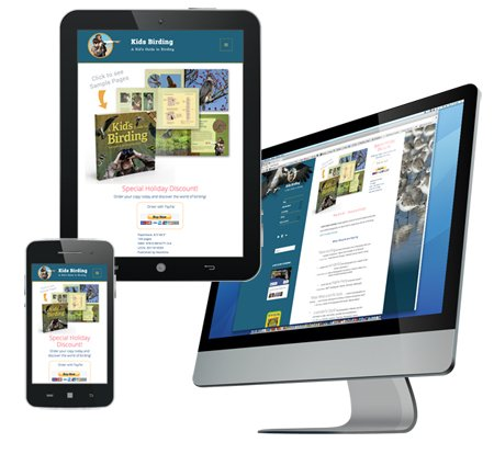 responsive webste design example