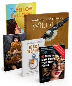 book cover design image