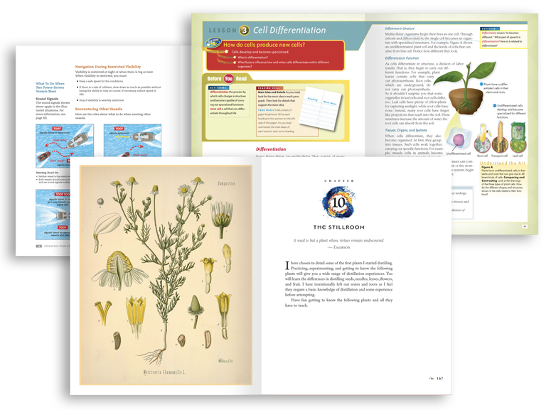 Book page layout and design examples