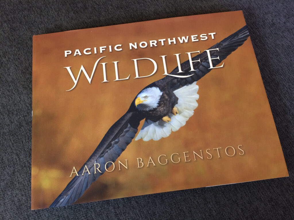 Book Jacket design for wildlife photography book