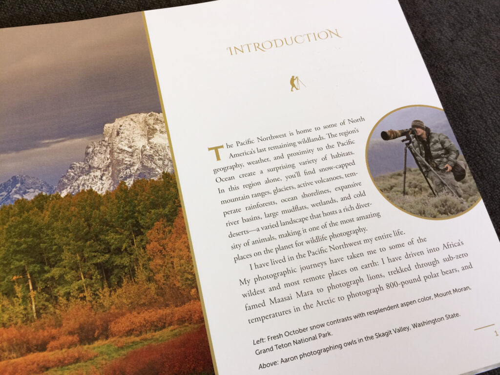 Page design for photography book