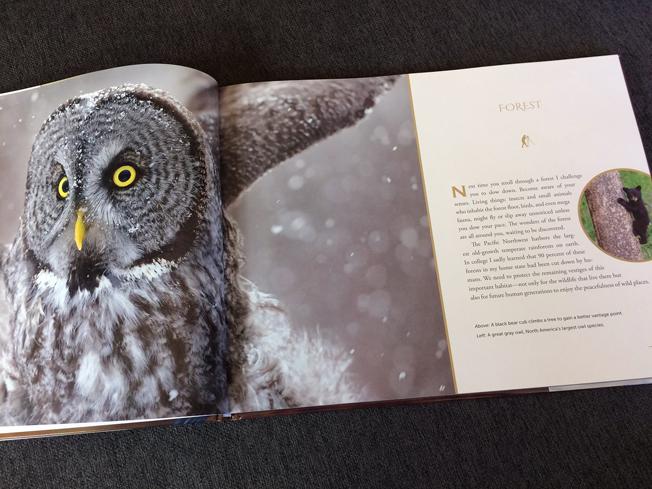 Page spread design in Pacific Northwest Wildlife